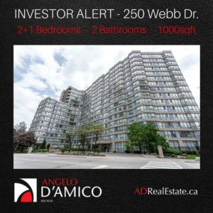 Just LISTED 250 WEBB DR